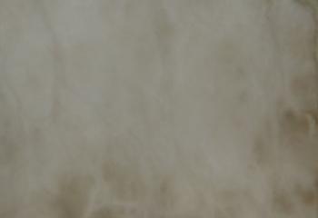 Alabaster-R01